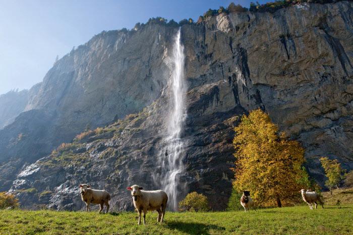 Staubbach Falls, 300 m high - Lauterbrunnen